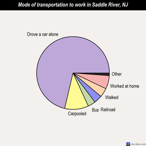 Saddle River mode of transportation to work chart