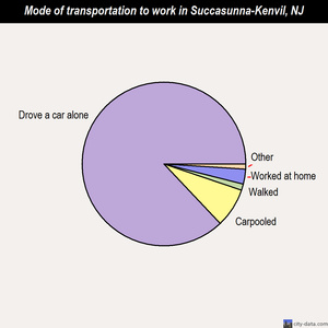 Succasunna-Kenvil mode of transportation to work chart