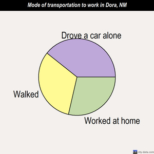 Dora mode of transportation to work chart