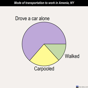 Amenia mode of transportation to work chart