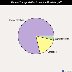 Brushton mode of transportation to work chart
