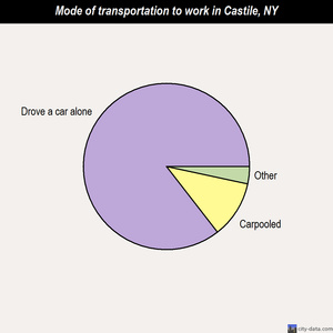 Castile mode of transportation to work chart