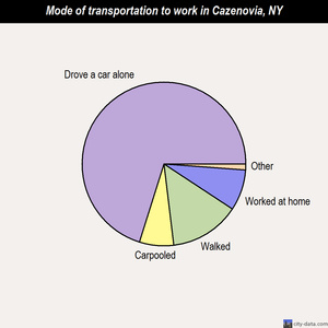 Cazenovia mode of transportation to work chart