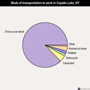 Copake Lake mode of transportation to work chart