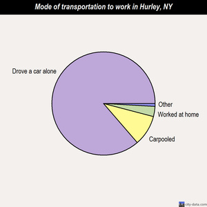 Hurley mode of transportation to work chart