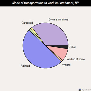 Larchmont mode of transportation to work chart