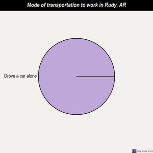 Rudy mode of transportation to work chart