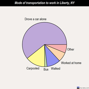 Liberty mode of transportation to work chart