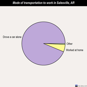 Salesville mode of transportation to work chart