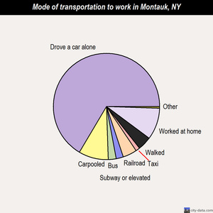 Montauk mode of transportation to work chart