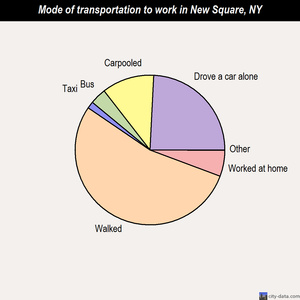 New Square mode of transportation to work chart