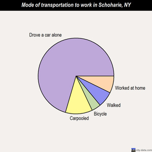 Schoharie mode of transportation to work chart