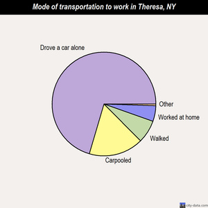 Theresa mode of transportation to work chart