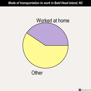 Bald Head Island mode of transportation to work chart