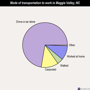 Maggie Valley mode of transportation to work chart