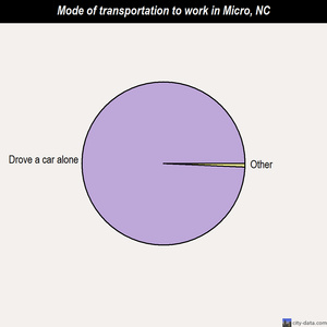 Micro mode of transportation to work chart
