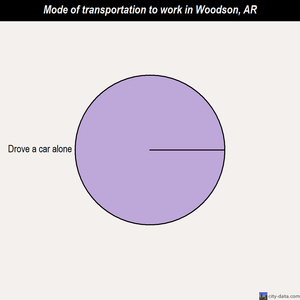 Woodson mode of transportation to work chart