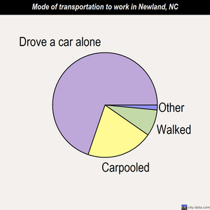 Newland mode of transportation to work chart