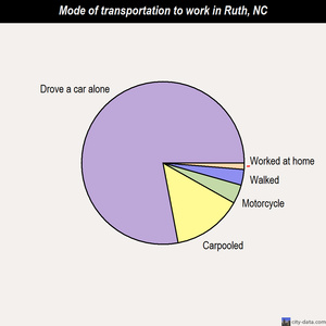 Ruth mode of transportation to work chart