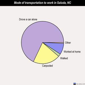 Saluda mode of transportation to work chart