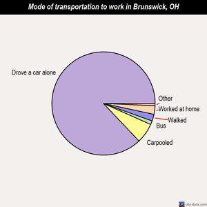 Brunswick mode of transportation to work chart