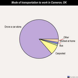 Cameron mode of transportation to work chart