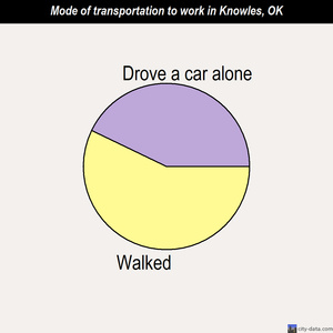 Knowles mode of transportation to work chart