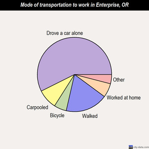 Enterprise mode of transportation to work chart