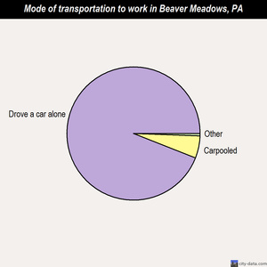 Beaver Meadows mode of transportation to work chart