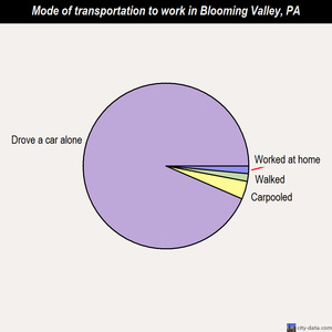 Blooming Valley mode of transportation to work chart