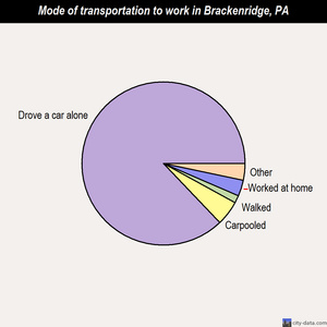 Brackenridge mode of transportation to work chart