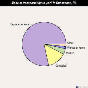 Duncannon mode of transportation to work chart
