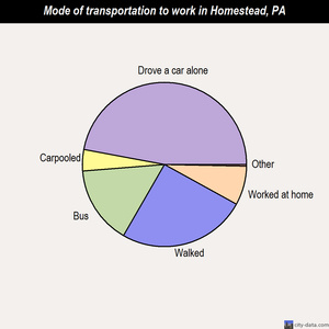 Homestead mode of transportation to work chart