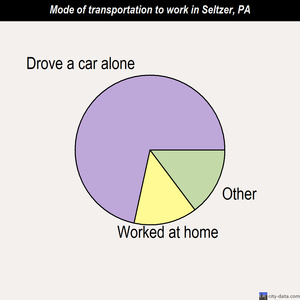 Seltzer mode of transportation to work chart
