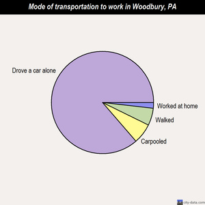 Woodbury mode of transportation to work chart