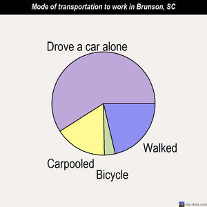 Brunson mode of transportation to work chart