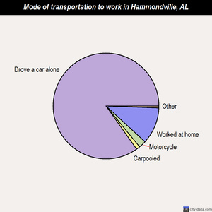 Hammondville mode of transportation to work chart