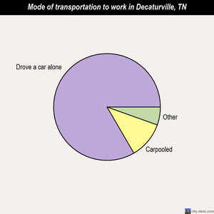 Decaturville mode of transportation to work chart
