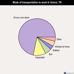 Unicoi mode of transportation to work chart