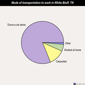 White Bluff mode of transportation to work chart