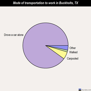 Buckholts mode of transportation to work chart