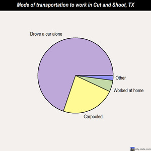 Cut and Shoot mode of transportation to work chart