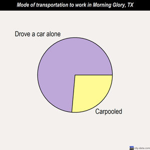 Morning Glory mode of transportation to work chart