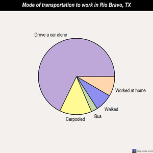 Rio Bravo mode of transportation to work chart