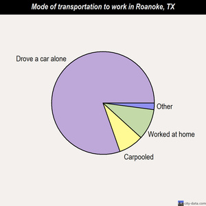 Roanoke mode of transportation to work chart