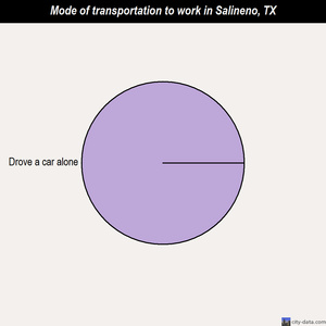 Salineno mode of transportation to work chart