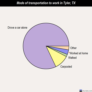 Tyler mode of transportation to work chart