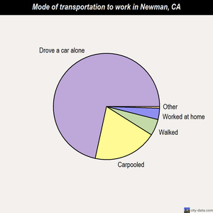 Newman mode of transportation to work chart