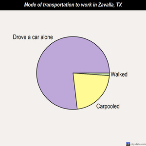 Zavalla mode of transportation to work chart