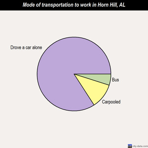 Horn Hill mode of transportation to work chart